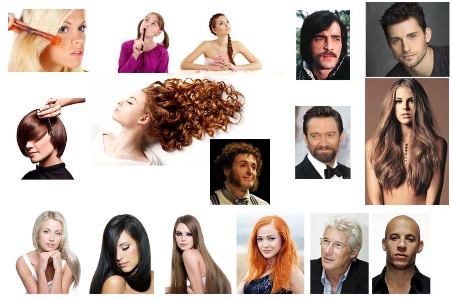 Визуальный словарь на тему «Волосы и прически»